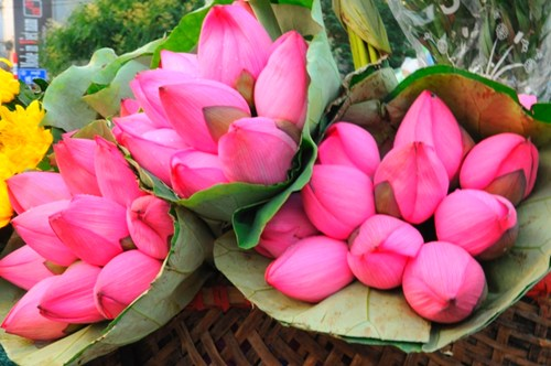 Quang ba flower market come and enjoy special traditional daily popular bunches of fragrant lotus outstanding vietnam identification mightylinksfo