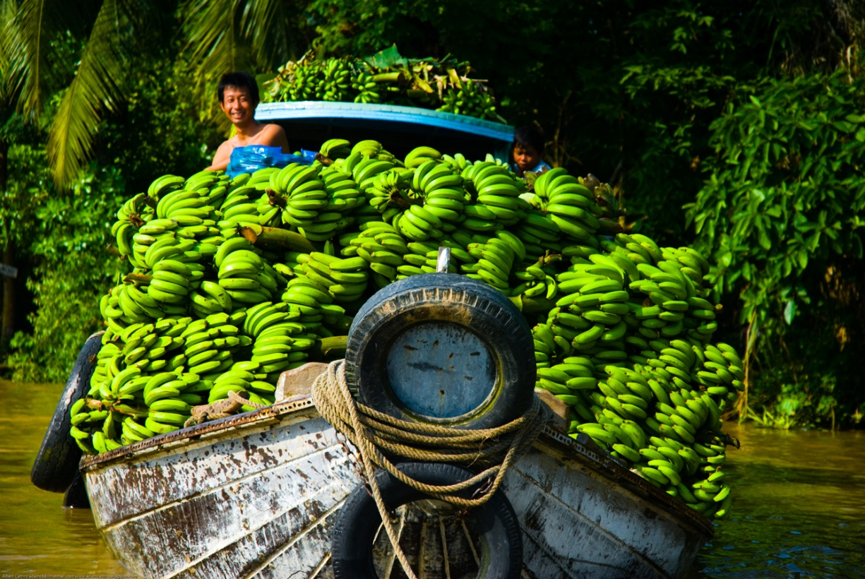 Cai Rang floating market is the biggest fruit and agricultural wholesale market in Can Tho